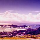 Sawtell Headland by wallarooimages