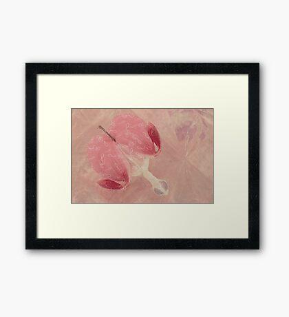 Bleeding Heart Macro - Musical  Framed Print