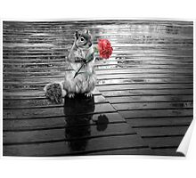 Rainy Days - Squirrel Poster