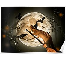 Bewitching - Squirrel Poster