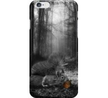 The Right Path - Squirrel in the Woods iPhone Case/Skin