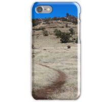 Yahi trail - Upper Bidwell park Chico, CA iPhone Case/Skin