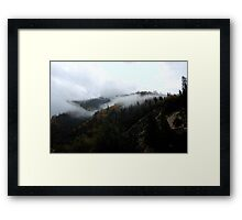 Feather canyon - Plumas forest Framed Print