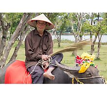 Vietnam Man on Water Buffalo Photographic Print