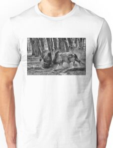 BULL FIGHT  IN THE OUTBACK Unisex T-Shirt
