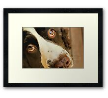 Want Me to Take You For a Walk? Framed Print