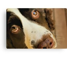 Want Me to Take You For a Walk? Canvas Print
