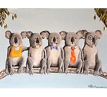 The Five Koalas Photographic Print