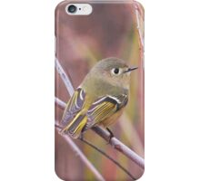 Ruby-crowned Kinglet iPhone Case/Skin