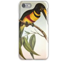 John GouldÆs Monograph of the Ramphastidae, or Family of Toucans, published in  iPhone Case/Skin