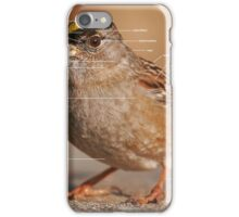 Parts of a Bird - Golden-crowned Sparrow iPhone Case/Skin