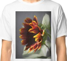 Sunflower Elegance ( 1 ) Classic T-Shirt