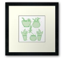 a collection of cacti Framed Print