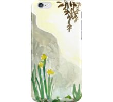 Sunny wall in Spring iPhone Case/Skin