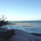 Fraser Isand Sandy Straits by gillsart