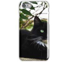 Tuxedo Cat Of Jerome Arizona iPhone Case/Skin