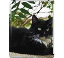 Tuxedo Cat Of Jerome Arizona iPad Case/Skin