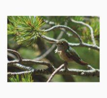 Female Anna's Hummingbird One Piece - Short Sleeve