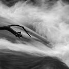 Aquaphobia: Reaching Out by Kevin Skinner