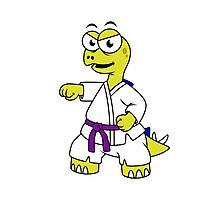 Illustration of a Stegosaurus practicing karate. Photographic Print