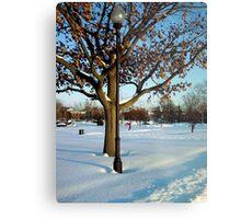 A winter snow scene Metal Print