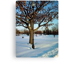 A winter snow scene Canvas Print