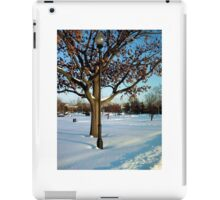 A winter snow scene iPad Case/Skin