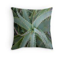 Aloe Vera Throw Pillow