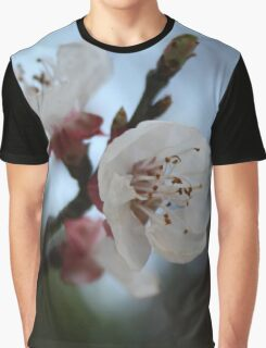 Close Up Apricot Blossom In Pastel Shades Graphic T-Shirt