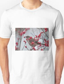 This one will do Unisex T-Shirt