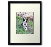 Crazy for Toys Framed Print