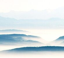 The Black Forest and the French and German Alps  by Imi Koetz