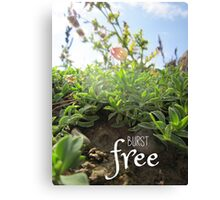 """Burst Free"" – Small Flower Bud Canvas Print"