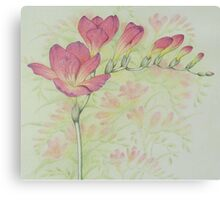 Red Freesia Flower Sprig in Coloured Pencil Canvas Print