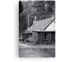 Tin house in the woods Canvas Print