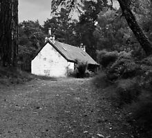 The cottage down the lane by JacquiHall