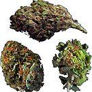 420 Buds #76 by sensameleon