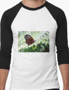 Perched Men's Baseball ¾ T-Shirt