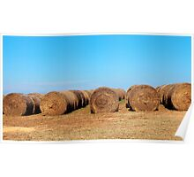 Round Bales Of Hay Poster