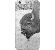 WOODLANDS BUFFALO iPhone Case/Skin