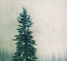 Solitary Tree by Priska Wettstein