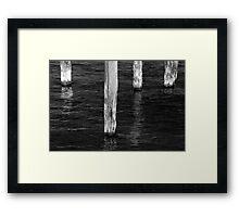 Four Old Pilings BW Framed Print