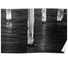 Four Old Pilings BW Poster