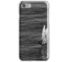 Single Old Piling Horizontal BW iPhone Case/Skin