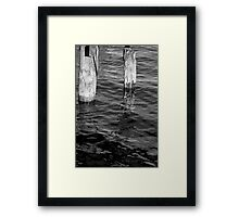 Two Old Pilings 2 BW Framed Print