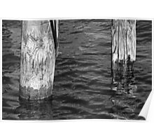 Two Old Pilings 3 BW Poster