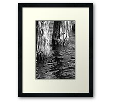 Two Old Pilings 4 BW Framed Print