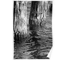 Two Old Pilings 4 BW Poster