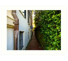 Duck Down the Alleyway — Charleston Cobblestone Art Print