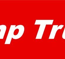 Bumper Sticker 2016 Series: Dump Trump by uniquesparrow